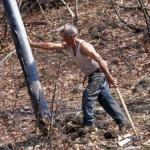 Il taglio del bosco -1- Gianni Ottonello