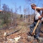 Il taglio del bosco -6- Gianni Ottonello