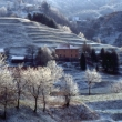 Anche l'inverno a suo modo... Foto di Gianni Ottonello