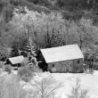 Inverno al Passo del Faiallo – Foto di Gianni Ottonello