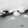 Nevicata lungo lo Stura - Foto di Gianni Ottonello