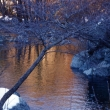 Rio Masca in inverno - Foto di Gianni Ottonello