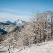 Neve a Campo ligure - Foto di Gianni Oliveri