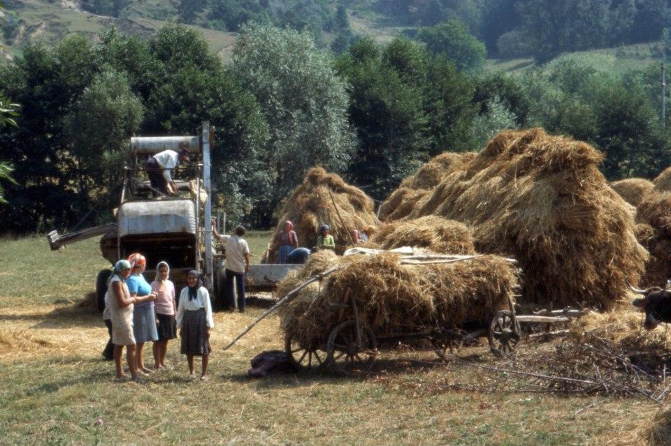 Ricordi d'estate - Foto di Gianni Ottonello