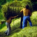 Mondo contadino della Valle Stura - Foto di Gianni Ottonello