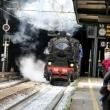Rossiglione XX Expo 2013, Castagnata e Treno d'epoca - Foto di Tommy Pittaluga