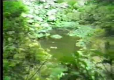 Gita ai Laghi Pugnati-gni e Manzo